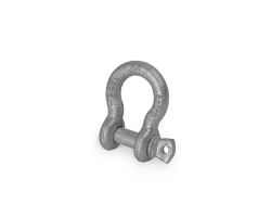 Anchor Shackle or Screw Pin shackle.