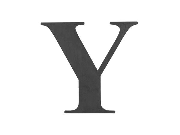 Steel Letter Y