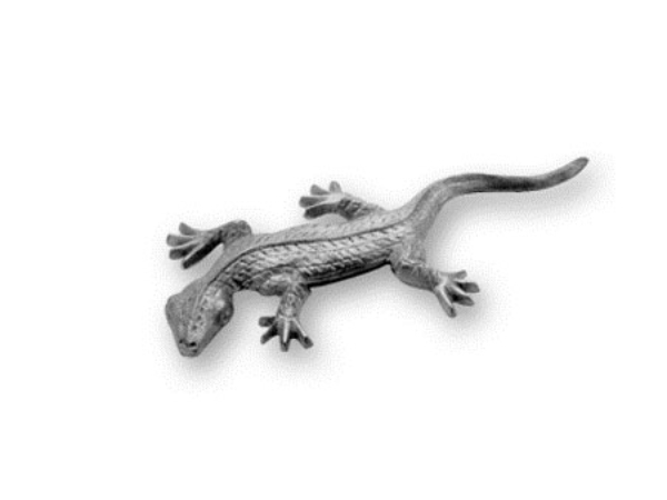 Cast iron lizard casting