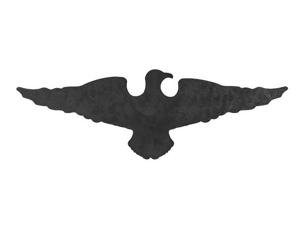 Plasma cut sign with eagle